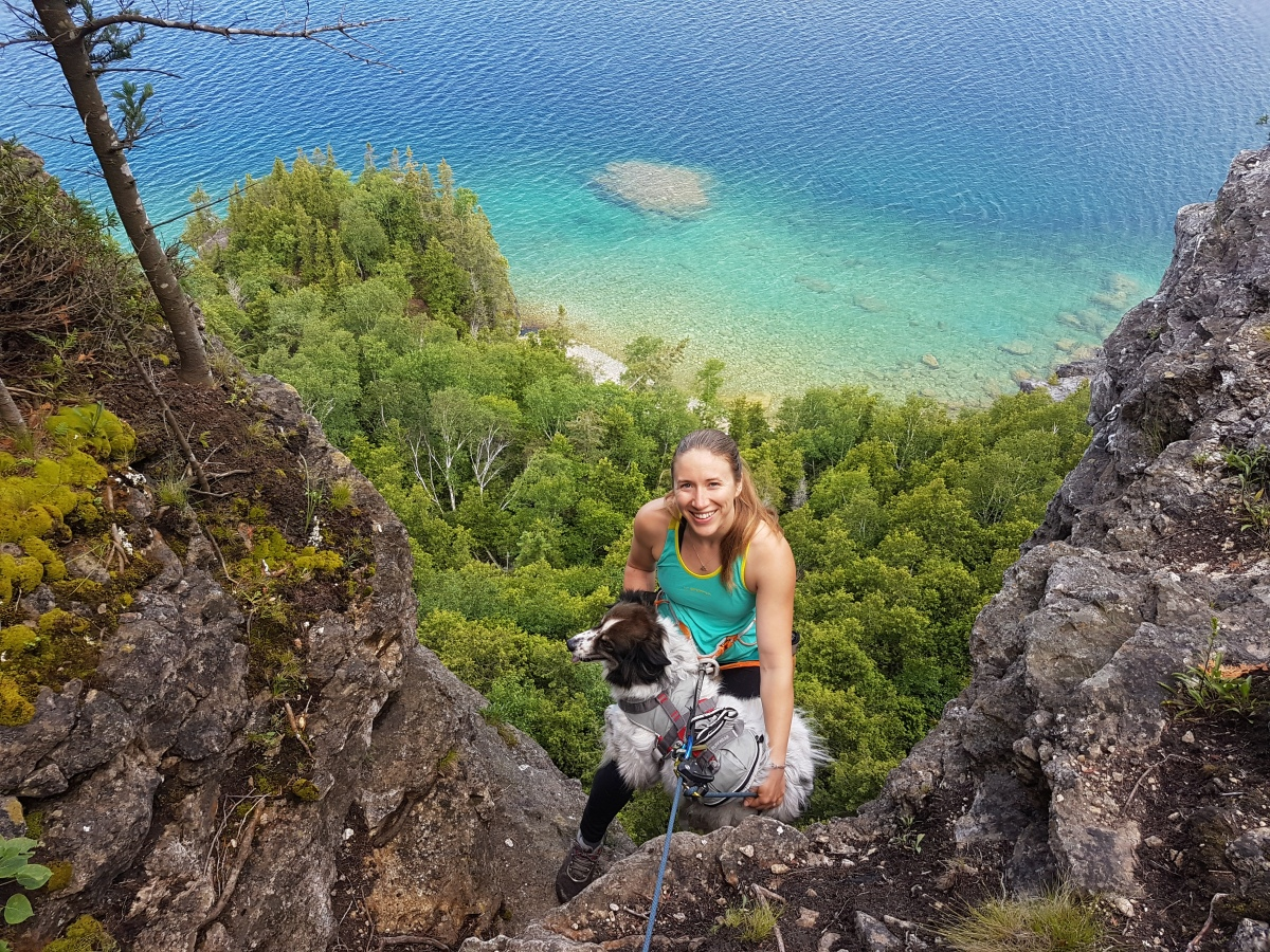 Rappelling with your Dog